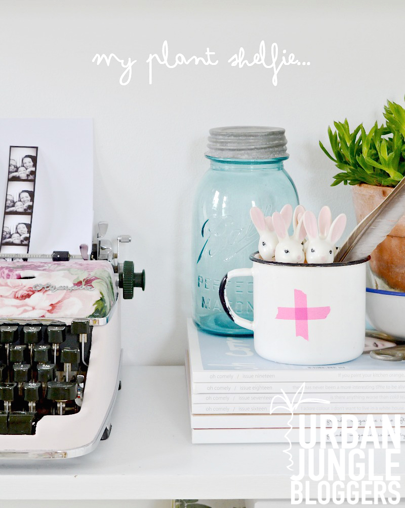 urban-jungle-bloggers-plant-shelfie-lapinblu copy