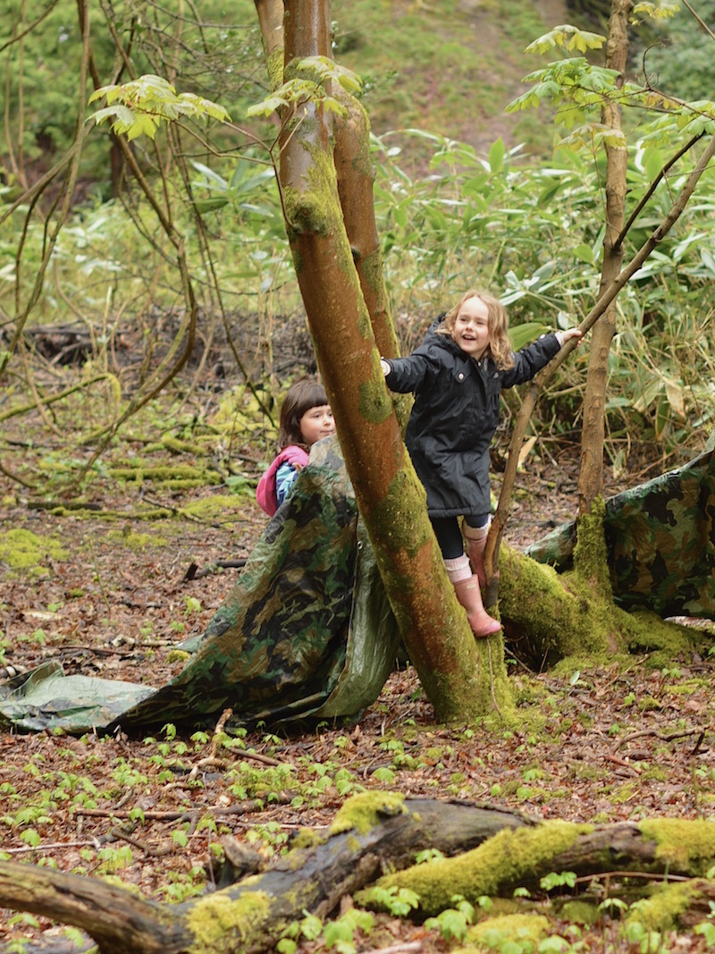 den building at beach and forest school, studland, dorset