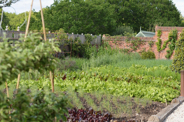 The Pig Hotel grow much of their own ingredients for their incredible feasts