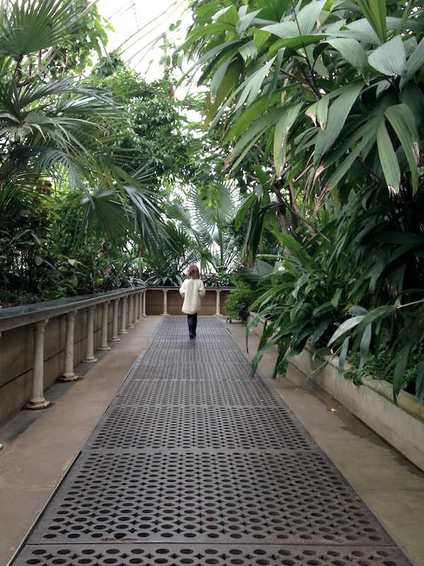wander the paths between giants at Kew Gardens Palm House
