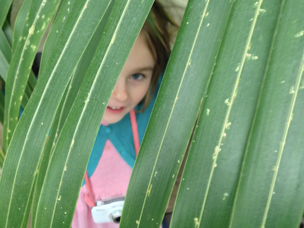 botanical peekaboo at Kew Gardens