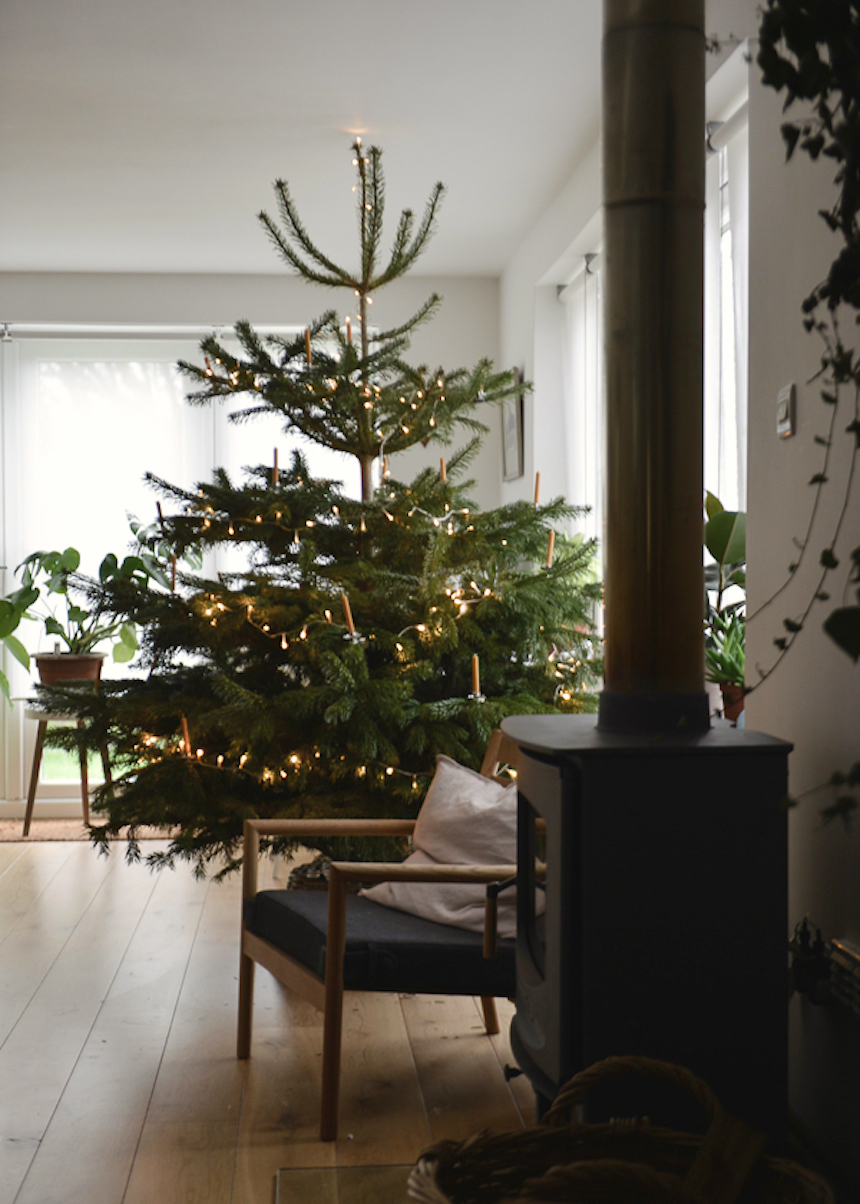 Natural Decor for A Simple Christmas... | LapinBlu