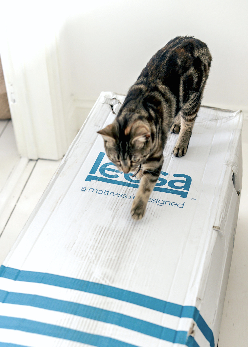 Leesa Mattress Review_SarahLouFrancis_LapinBlu-12